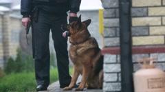 Dog and policeman Stock Footage