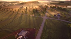 Magical sunrise through ground fog with long shadows and sunbeams - stock footage