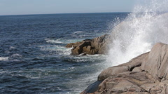 Waves at Peggy's Cove Stock Footage