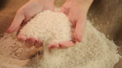 Female hands selecting rice, choosing best ingredient for sushi, quality control Stock Footage