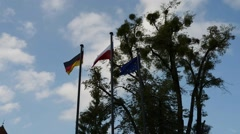 Flags European Union, Germany and Poland Stock Footage