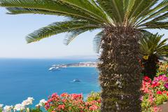 Palm tree and geranium flowers with seascape at Sicily Stock Photos