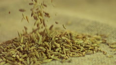 Organic rye grain falling on sack cloth, food processing industry, slow motion - stock footage