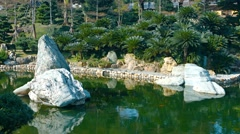 Decorative Pond at Chi Lin Nunnery's Gardens in Hong Kong Stock Footage