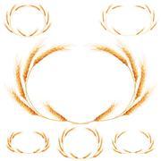 Set of 6 detailed Wheat ears. EPS 10 - stock illustration