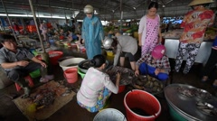 Fish seller working at market Stock Footage