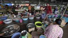 View of fish seller working at market Stock Footage