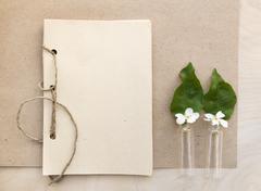 Open sketchbook with white bird-cherry - stock photo