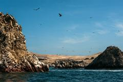 Ballestas Islands, Paracas National Reserve. The very first Marine Conservati Stock Photos