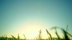 Beautiful nature background with soap bubbles. RAW video record Stock Footage