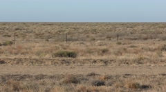 Barren Empty Desert Shrubland in Australia Outback Stock Footage