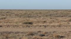 Barren Empty Desert Shrubland in Australia Outback Stock Footage