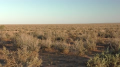 Driving Moving Shot of Australia Outback Barren Shrubland Desert Scenery Stock Footage