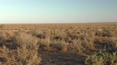 Driving Moving Shot of Australia Outback Barren Shrubland Desert Scenery Stock Footage