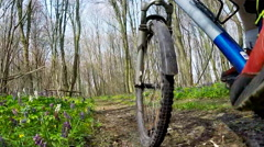 Cyclist bike while riding bicycle on forest road. Stock Footage