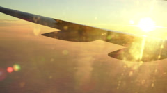 Wing in the morning sun Stock Footage