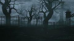 Horror night park. Moonlight . halloween concept. 3d animation Stock Footage