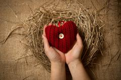 Female holding red knitted heart in hands at nest Stock Photos