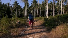 Traveler with Backpack Walking in Forest. Travel Concept. Slow Motion. Stock Footage