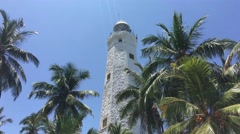 Dondra Head Lighthouse in between the palmtrees Stock Footage