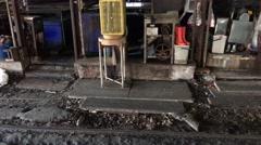 Rat at Samut Sakhon railway station Stock Footage