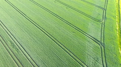 Aerial view of cultivated area - rural scene - stock footage