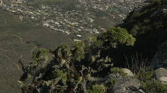 4K Small Tree On Edge Of Mountain Cliff Rock Face Over City - stock footage
