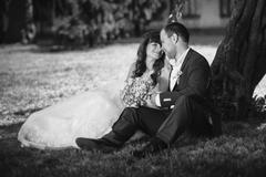 Black and white photo of newly married couple sitting under tree at park at s Stock Photos