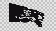 Waving Ripped Pirate Flag Stock Footage