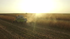 Aerial view of a combine tractor harvesting maize or corn at countryside - stock footage