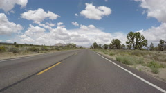 Joshua Tree Forest Desert Highway Driving Stock Footage