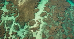 Tropical Coral Reef Aerial Seascape - stock footage