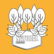 Natural and eco  design Stock Illustration