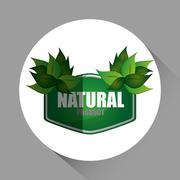Natural and eco  design, vector illustration - stock illustration