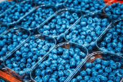 Fresh Blue Berries Blueberries Blueberry At Market In Trays, Con Stock Photos