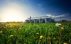 photo of grain elevators in meadow at sunset - stock photo