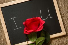 red rose lying on declaration of love written on blackboard - stock photo