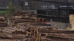 Pan across Logging Industry - Forestry and Wood Production Stock Footage