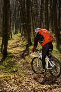 Cyclist Riding the Bike on a Trail in Summer Forest Stock Photos