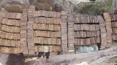 Aerial looking straight down at log pile at saw mill - Lumber Yard Stock Footage