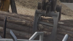 Logging Industry - Forestry and Wood Production - Machines picking up logs Stock Footage