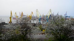 Cargo cranes in the seaport and railcars. Odessa. Ukraine. - stock footage