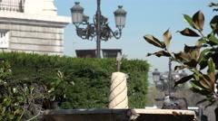 4K Beautiful pigeon sparrow take bath fountain water hot summer day urban city   Stock Footage