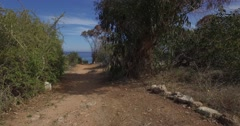 Forest Rocky trail leading to a cliff overlooking the sea - Panoramic view Stock Footage