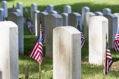 Veterans Cemetery with American Flags Kuvituskuvat