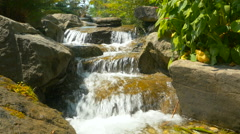 Forest stream running throught the stones close-up Stock Footage