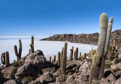 Isla de Pescadores, Salt lake Uyuni in Bolivia Stock Photos