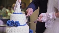 Cutting the wedding cake Stock Footage