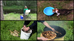 Woman angling with cat pet. Smoked fish. Footage clips collage Stock Footage
