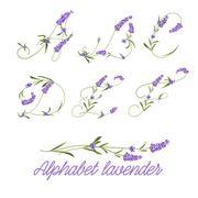 Set of lavender flowers Stock Illustration